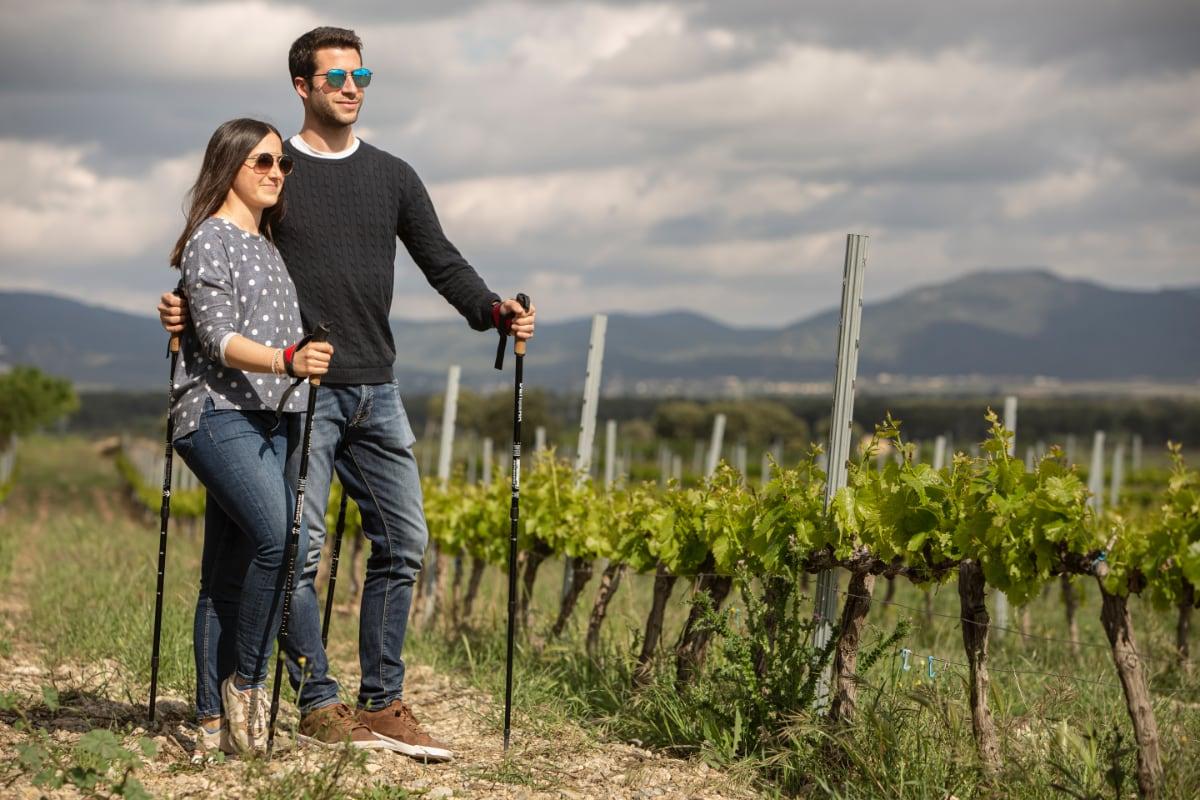 Walk & Wine